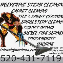 Upholstery Amp Carpet Cleaning Amp Repair