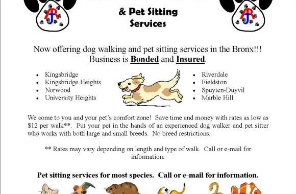 Dog Walking Prices For Kids