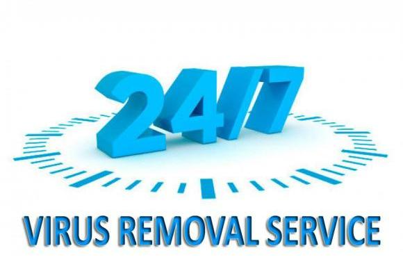 Perk Up Your System Performance with Online Virus Remover Services, Seekyt